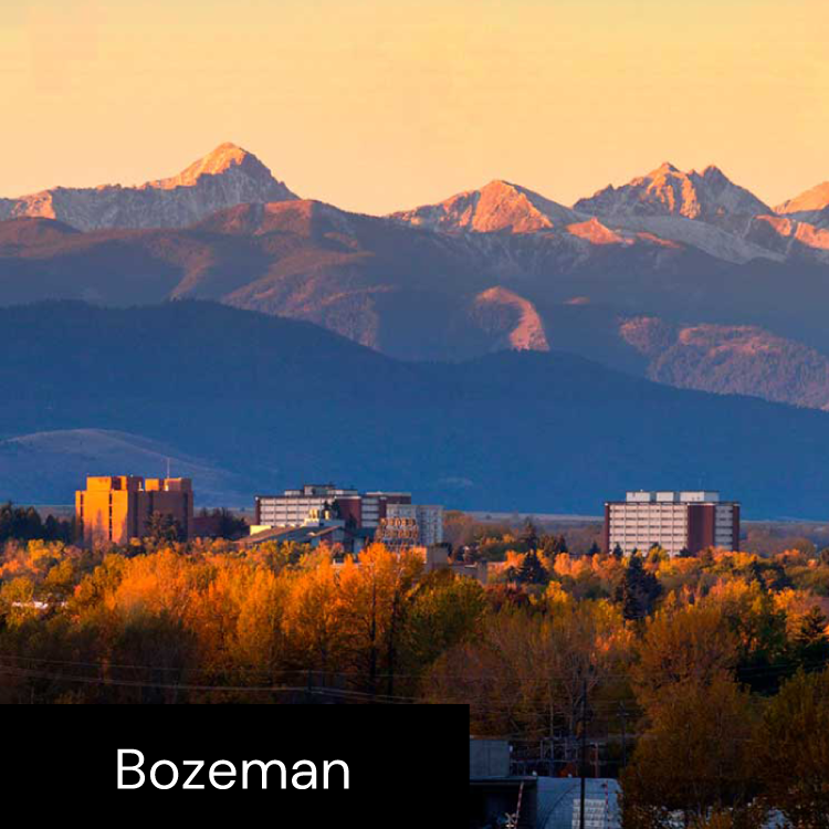 ASAPP - Company - Bozeman